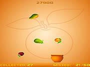 Fruits Fall