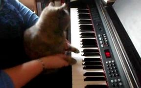 Darla Plays the Piano