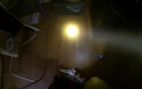 GoPro Camera Video: Fireman Saves Kitten