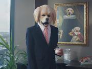 GPI Commercial: Mr. Rex