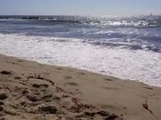 Waves Crashing on California Beach