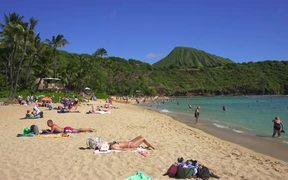 Sun Bathers on Hawaiian Beach