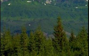 Wrangell St. Elias National Park