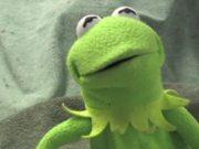 Kermit has a Meltdown