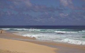 Medium Zoom Shot of Waves Crashing on Beach
