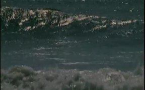Waves Compilation