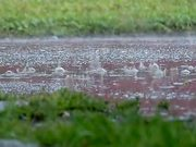 Slow Motion Rain