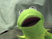 Kermit has a Meltdown