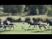 Weetabix Commercial: Steeplechase