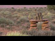 Universal Pictures Presents: Seth MacFarlane Movie