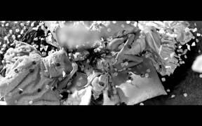 QVC Video: Moi by Miss Piggy