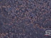 Utah Salt Flats Close Up