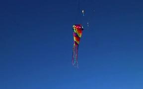 Flying Kite Royalty Free HD Stock Video