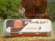 Intuit Commercial: Happy Hens