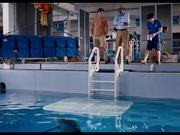 Dolphin Tale 2 Official Main Trailer