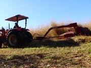 Switchgrass Biomass Feedstock B-Roll
