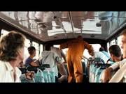 Volkswagen Commercial: Bus