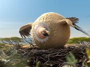 Kyra & Constantin Video: Rollin Wild Vulture