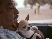 T-Mobile Commercial: José's Wi-Fi Dogs