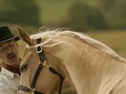 Expedia Commercial: Horse
