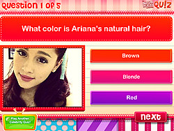 Quiz Do You Know Ariana Grande Game Play Online At Y8 Com