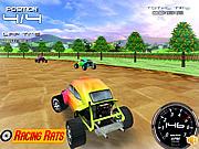 Rally Bugs