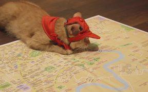 Pizza Hut Campaign: Destination Checked!