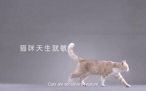 Kotex Commercial: Cat Pad