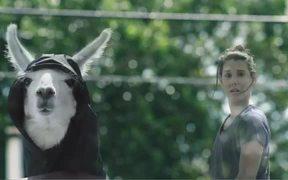 Ergon Energy: Grim Llama Shocks and Tingles