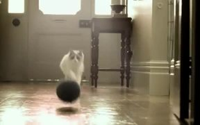"Purina One TV Commercial ""Get Ready To Play"""
