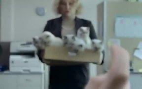 Instant Kiwi Campaign: Kittens