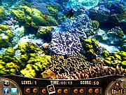 Sea World Sniper