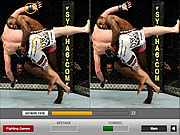 Ultimate Fighting Differences