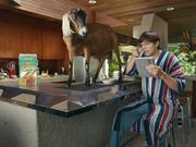 Lenovo Campaign: Ashton Kutcher and a Goat