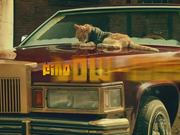 The Ten Movement Scooter Neutered Cat