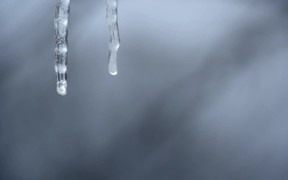 Icicle Melting in Slow Motion