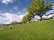 Beautiful Spring Day at a Green Park