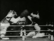 Professor Welton's Boxing Cats (1894)