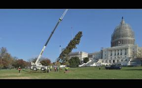 2014 Capitol Christmas Tree Arrival Timelapse