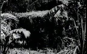 The New Adventures of Tarzan Chapter 3