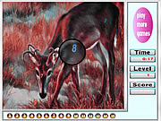 Red deers hidden numbers
