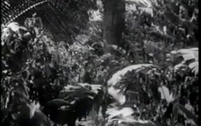 The New Adventures of Tarzan Chapter 5