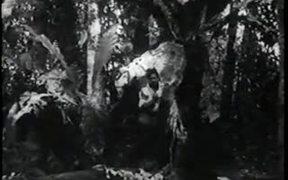 The New Adventures of Tarzan Chapter 4