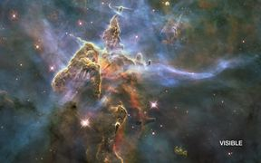 65-A whole new view of the Horsehead Nebula