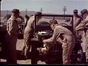 Atomic Bomb Blast Effects 1956