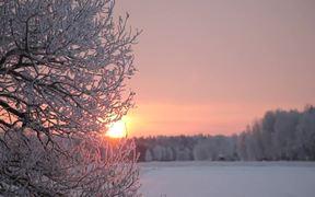 Into the Sun - Winter Fairy