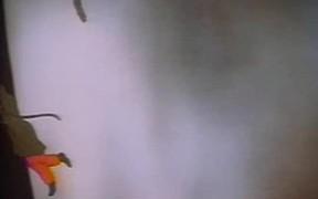 Superman: Terror on the Midway