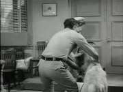 The Andy Griffith Show: The Loaded Goat