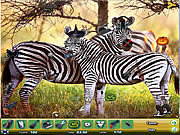 Zoo Hidden Objects 2