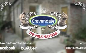 "Cravendale Commercial ""Cats With Thumbs"""